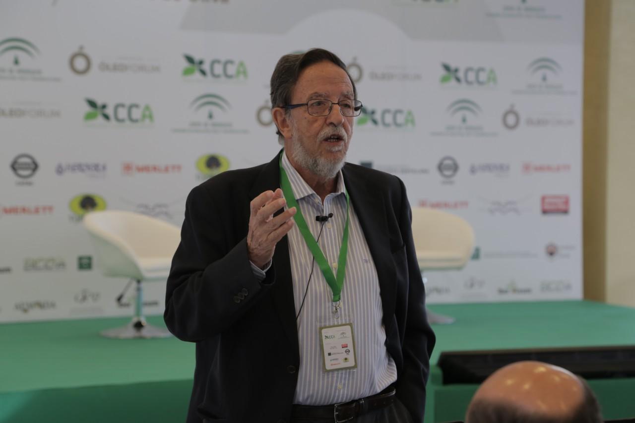 Luis Rallo