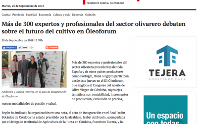 Teleprensa: «Más de 300 expertos y profesionales del sector olivarero debaten sobre el futuro del cultivo en Óleoforum»