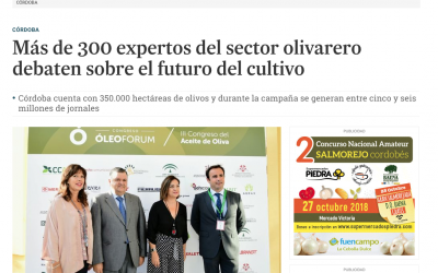 El Día de Córdoba: «Más de 300 expertos del sector olivarero debaten sobre el futuro del cultivo»