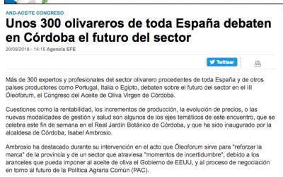 """Inversión Finanzas: """"Unos 300 olivareros de toda España debaten en Córdoba el futuro del sector"""""""