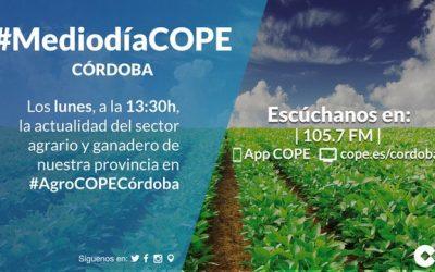 Cope Córdoba: Entrevista con motivo de la Presentación Óleoforum III
